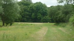 Changes to Green Belt? Watch the Budget